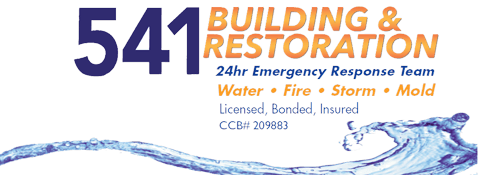 541 Building and Restoration
